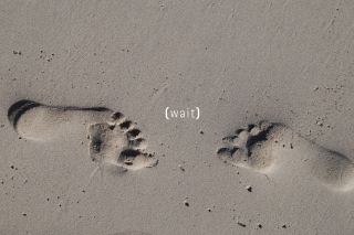 Free Footprints On Sand Picture for Android, iPhone and iPad