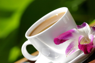 Orchid and Coffee Picture for Android, iPhone and iPad