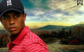 Tiger Woods - Obrázkek zdarma pro LG Optimus M