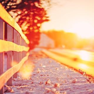 Winter Landscape Fence - Obrázkek zdarma pro iPad
