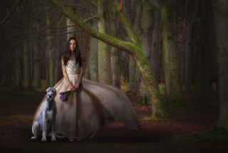 Girl, Lavender Bouquet And Dog Picture for Android, iPhone and iPad