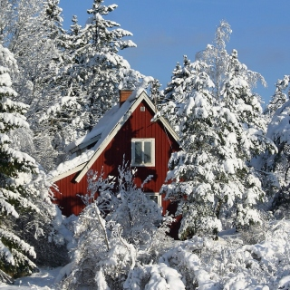 Winter in Sweden - Obrázkek zdarma pro 2048x2048