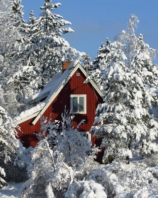 Winter in Sweden - Obrázkek zdarma pro Nokia Asha 306