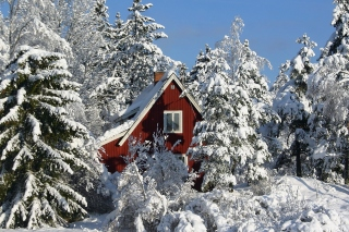 Winter in Sweden Background for Android, iPhone and iPad