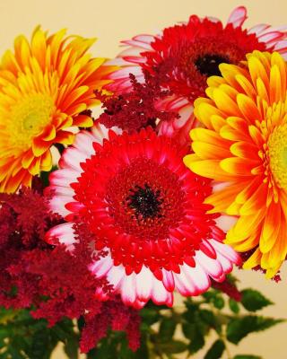 Gerbera Wedding Bouquet - Obrázkek zdarma pro Nokia Asha 308