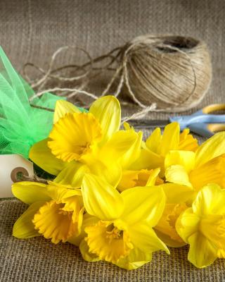 Daffodils bouquet - Obrázkek zdarma pro Nokia Asha 309