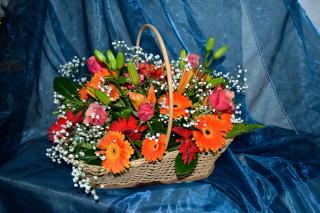 Gerbera Bouquet - Obrázkek zdarma pro 720x320