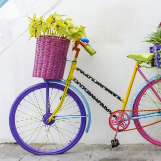 Flowers on Bicycle - Obrázkek zdarma pro 1024x1024