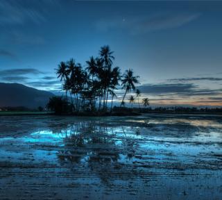 Malaysia - Obrázkek zdarma pro iPad 2