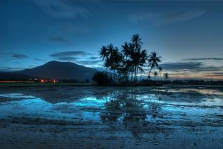 Malaysia - Obrázkek zdarma pro Samsung Galaxy A5