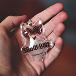 Owl Key Chain - Obrázkek zdarma pro 128x128