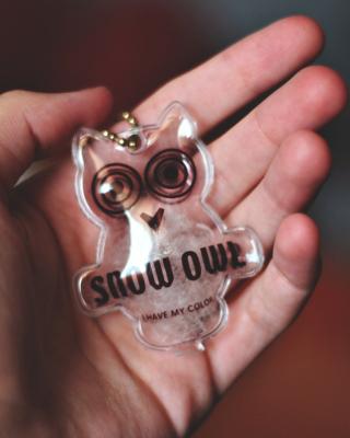 Owl Key Chain - Obrázkek zdarma pro 352x416