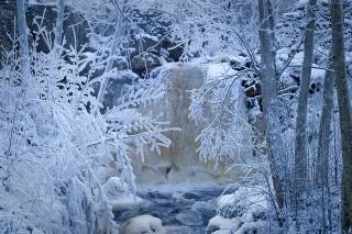Free Winter in Norway Picture for Android, iPhone and iPad