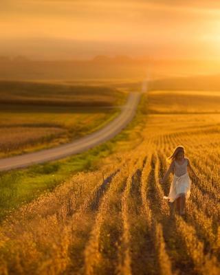 Sunset Field - Obrázkek zdarma pro Nokia Lumia 900