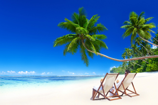 Vacation in Tropical Paradise Picture for Android, iPhone and iPad