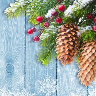 Indoor Christmas Decorations - Obrázkek zdarma pro iPad Air