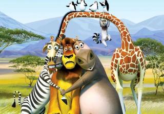 Madagascar - Obrázkek zdarma pro Samsung Galaxy Note 2 N7100