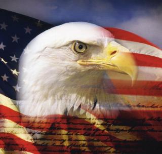 USA Flag - Obrázkek zdarma pro 208x208