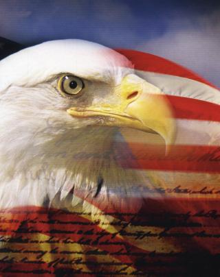 USA Flag - Obrázkek zdarma pro Nokia X7