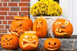 Free Halloween Pumpkin Picture for Android, iPhone and iPad