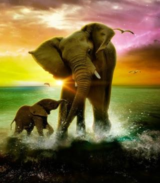 Elephant Family - Obrázkek zdarma pro Nokia C1-01