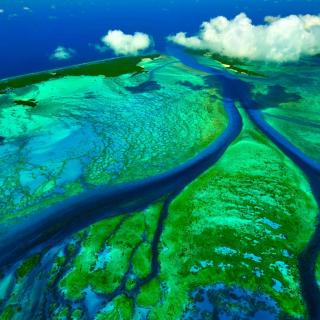 Aldabra Atoll, Seychelles Islands - Obrázkek zdarma pro iPad Air