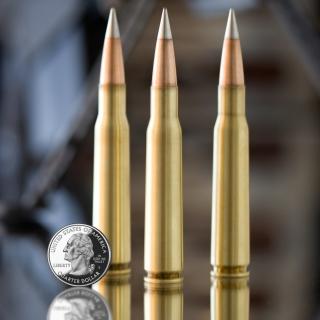 Bullets And Quarter Dollar - Obrázkek zdarma pro 1024x1024