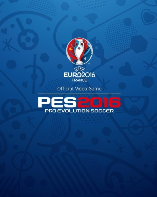 UEFA Euro 2016 in France - Obrázkek zdarma pro Nokia C3-01