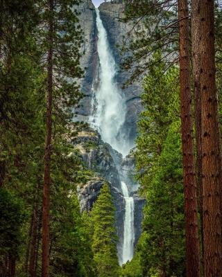 Giant waterfall - Obrázkek zdarma pro 640x960