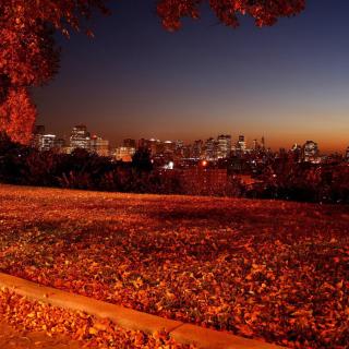 Autumn in Chicago - Obrázkek zdarma pro 2048x2048