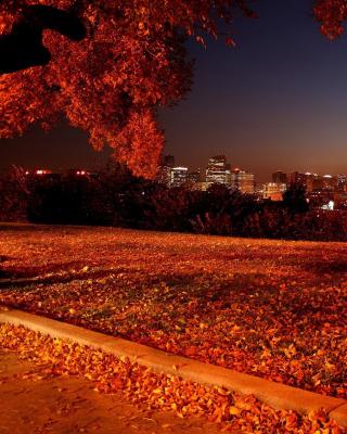 Autumn in Chicago - Obrázkek zdarma pro Nokia Lumia 1020