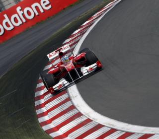 Hungarian F1 Grand Prix - Obrázkek zdarma pro 208x208