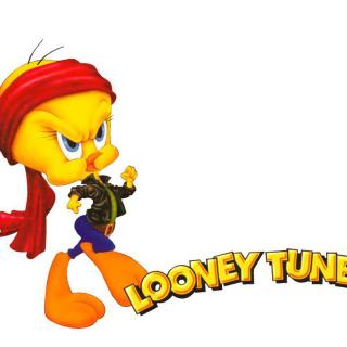 Tweety Looney Tunes - Obrázkek zdarma pro 320x320