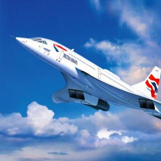 Concorde British Airways - Obrázkek zdarma pro 208x208