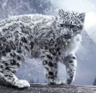 White Leopard - Obrázkek zdarma pro iPad mini 2