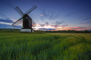 Windmill in Netherland Picture for Android, iPhone and iPad