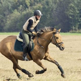 Horse Ride - Obrázkek zdarma pro iPad mini 2