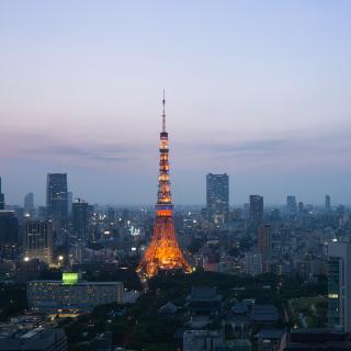 Twilight in Tokyo - Obrázkek zdarma pro iPad 2