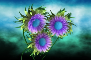 Purple Flowers Picture for Android, iPhone and iPad
