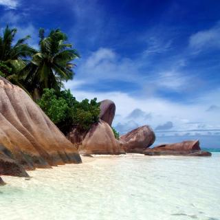 Seven Mile Beach, Grand Cayman - Obrázkek zdarma pro iPad