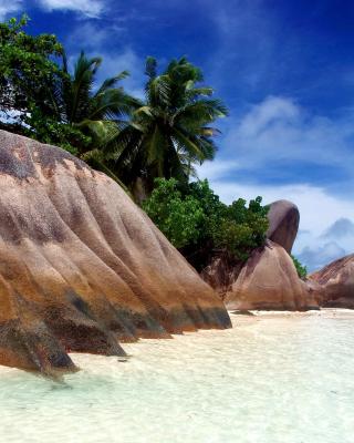 Seven Mile Beach, Grand Cayman - Obrázkek zdarma pro Nokia Asha 501