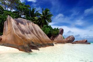 Seven Mile Beach, Grand Cayman - Obrázkek zdarma pro Motorola DROID 2
