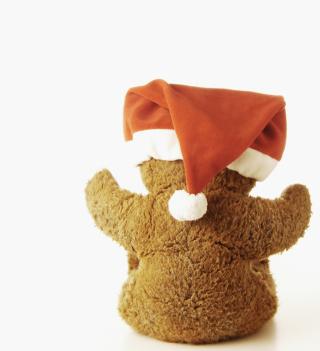 Christmas Plush Bear - Obrázkek zdarma pro 1024x1024
