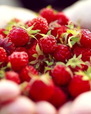 Macro HD Woodland Strawberry - Obrázkek zdarma pro 352x416