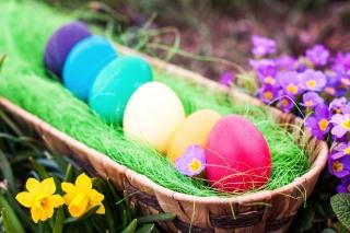Colorful Easter Eggs - Obrázkek zdarma pro 1920x1200