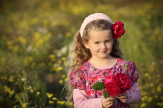 Roses From A Fairy Tale-Other Picture for Android, iPhone and iPad