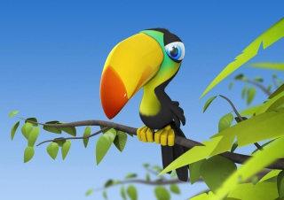 Toucan Colorful Parrot Wallpaper for Android, iPhone and iPad