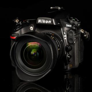 Nikon D800 - Obrázkek zdarma pro iPad 3