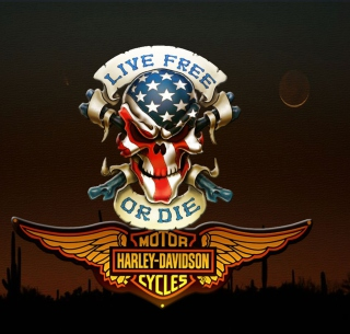 Harley Davidson - Obrázkek zdarma pro iPad 2