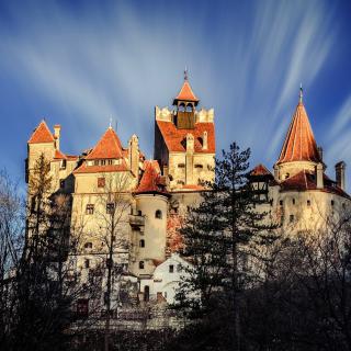 Castle Bran Dracula - Obrázkek zdarma pro 320x320